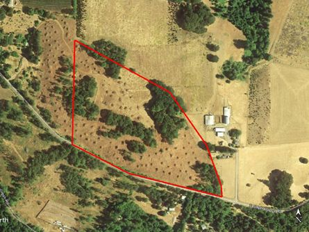 Buildable Vacant Oregon Land for sale